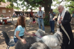 St Theresa's Church - Pet Blessing Day