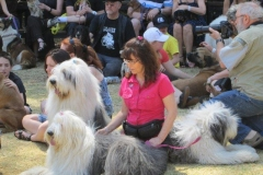 Pets Blessing Day at Goldfields