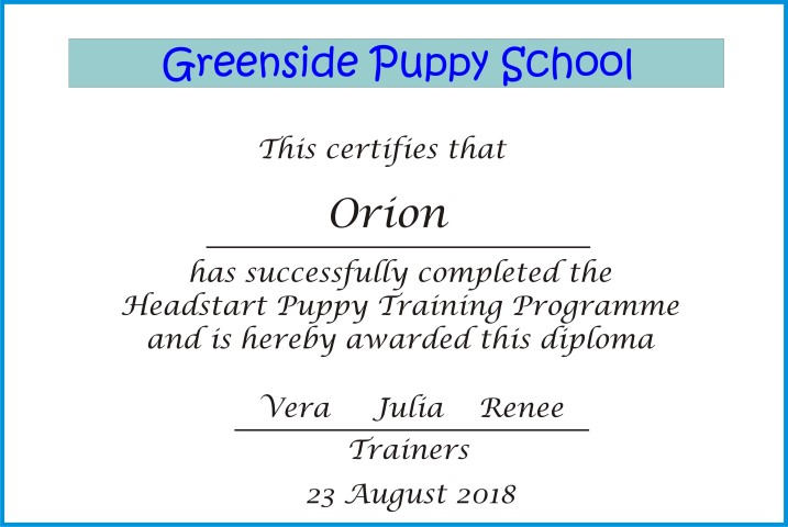 puppy certificate. (Small)