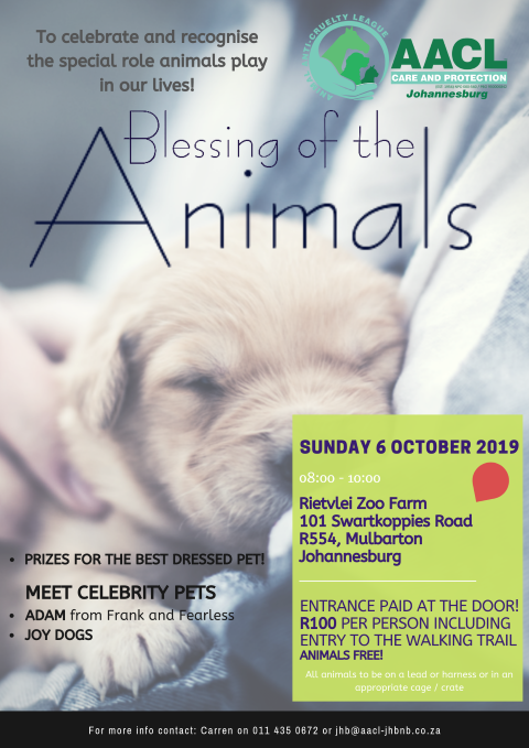 Blessing of the Animals 06 October 2019 (Small) (Small)