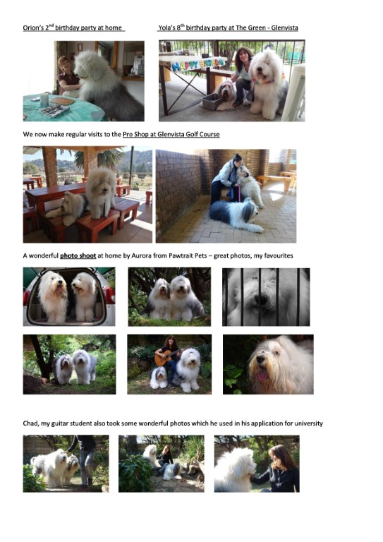 JOY Dogs 2020-page-1 (Medium)